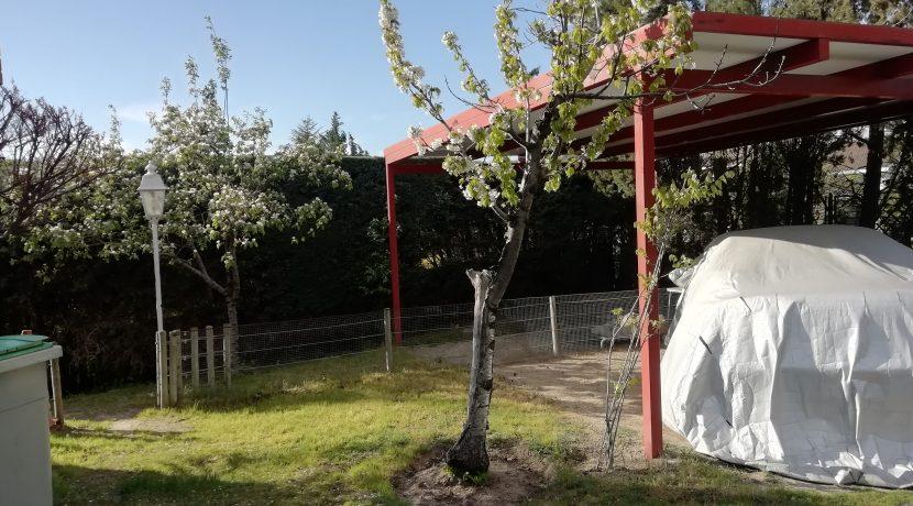 Jardin zona frontal y parking